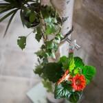 Birkensteher mit wunderschönen Blumen
